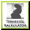 terhessegi-kor-kalkulator